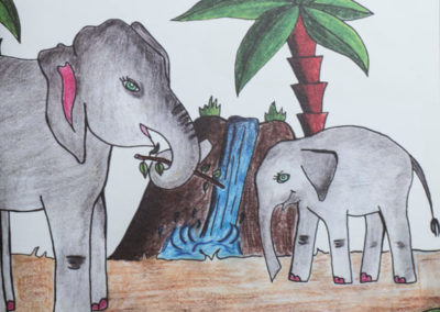 Omalovánky Exotická zvířata