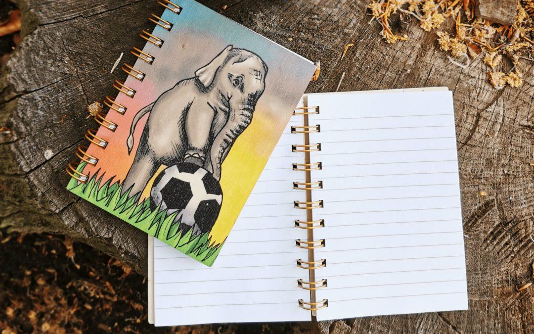 Deníček, slon s míčem