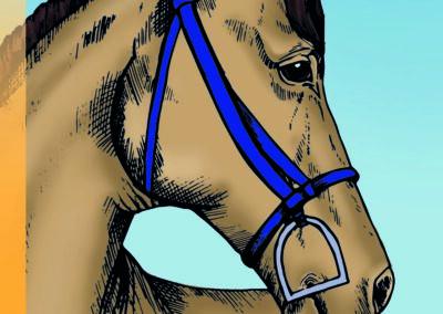 Omalovánka koně